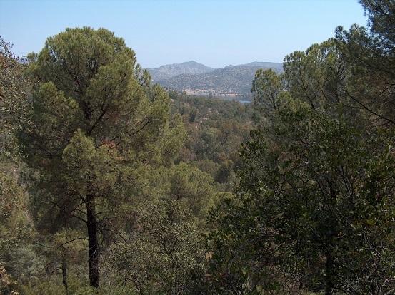 Una imagen de la Sierra de Andújar. Foto: Ayuntamiento de Andújar.