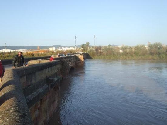 El río Guadalquivir a su paso por el puente romano de Andújar.
