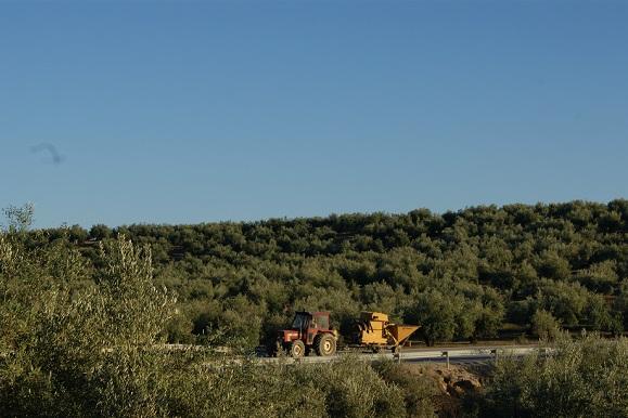 Un vehículo agrícola circula por una carretera de la Comarca de Andújar.